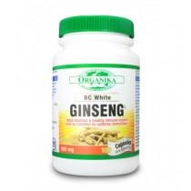 Ginseng 500 mg  100 capsules